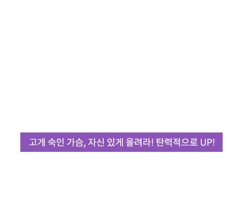 처진가슴교정술 텍스트
