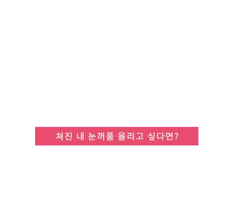 상안검 텍스트