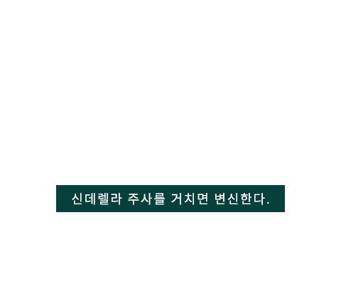신데렐라주사 텍스트