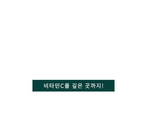 바이탈이온트 텍스트